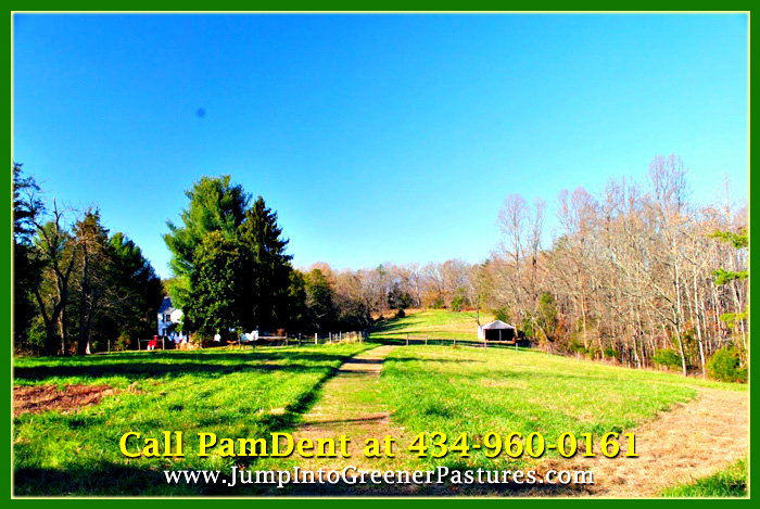 Ruckersville VA Home for Sale - 408 Welsh Run Rd - 003 Pasture